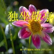 独坐敬亭山ppt课件