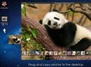 Arcsoft Photo+ Mac版V3.0.90138 官方版
