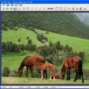 图片合成软件(Photo Montage Guide) V2.2.7 中文绿色版