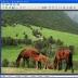 图片合成软件(Photo Montage Guide)电脑版