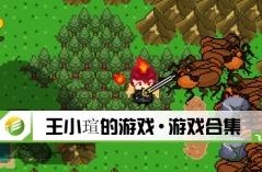 王小瑄的游戏·游戏合集