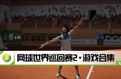 网球世界巡回赛2·游戏合集