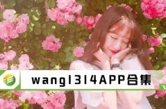 wang1314APP合集