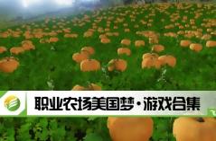 职业农场美国梦·游戏合集