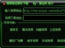 泉少视频地址解析V1.0 绿色版