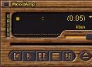 ANT.MP3 FansV1.0