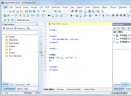 Rapid PHP 2014(PHP代码编辑器)V12.3 绿色英文特别版