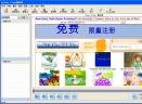 BabyFlash Flash播放器v4.4简体中文绿色免费版