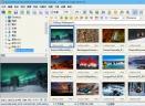 FastStone Image ViewerV6.3 便携版