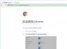 Chromium浏览器V64.0.3276.0 专业版
