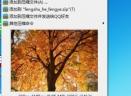 极速看图V1.1.9.0 官方版