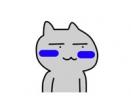 贱猫老脸一红表情包