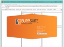 Burp Suitev2018 破解版