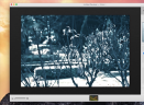 HydraV4.1 Mac版