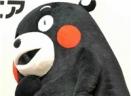 熊本熊关系为什么会变淡表情包