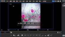 EDIUS Pro 9官方版