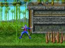 忍者的复仇GBA版