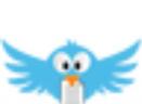 FileWingShredder(文件粉碎机)V5.5.1 官方版