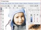 EMBIRD(电脑刺绣软件)V10.24 免费版