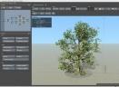 SpeedTree Cinema Edition(3D植被建模软件)V8.3.0 免费版