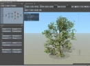 SpeedTree Cinema Edition(3D植被建模软件)V8.3.0 免费版