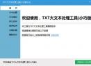 TXT大文本处理工具(小巧版)V1.1 免费版