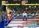 摔角霸王免费版