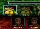 忍者蛙与双截龙 英文版V4.2.0 安卓版