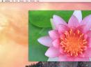 LilyViewV1.2.3 Mac版