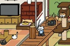 猫咪后院·游戏合集