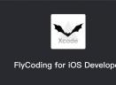 FlyCodingV1.0 Mac版