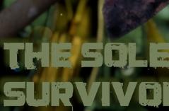 孤独的幸存者·游戏合集