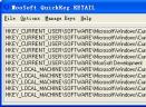 QuickRegV1.0.0.1054 英文绿色免费版