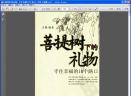 菩提树下的礼物:守住幸福的10个路口扫描版 [PDF]