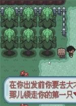 口袋妖怪:圣灰中文版
