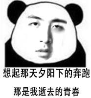 万万没想到熊猫表情