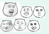 猥琐猫人脸qq表情包图片