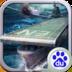大洋征服者V1.0.1 百度版