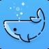 鲸鱼直播安卓版
