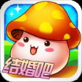梦幻蘑菇岛 V1.0 BT版