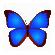 数码照片浏览器(bkViewer) V5.0.2.0 电脑版