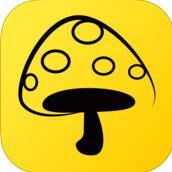 蘑菇丁 V2.2.4 安卓版