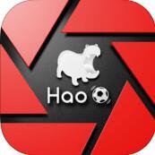 Hao球数据 V4.2.2 安卓版