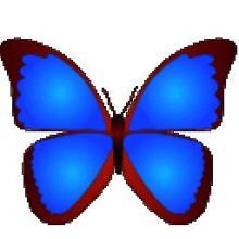 数码照片浏览器(bkViewer) V5.0.4.0 电脑版