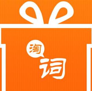 淘词大师 V2.8 官方版