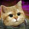 武装猫咪 V2.0 破解版