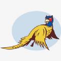 野鸡直播福利房间号分享 V1.0 免费版