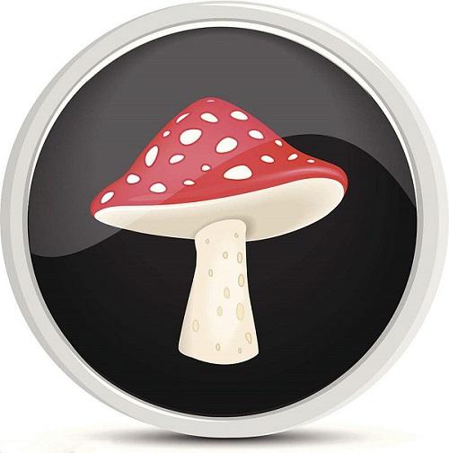 蘑菇助手 V18.0.1710.02 官方版