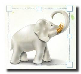 Image Tuner(图片批量处理软件) V4.6 官方安装版