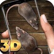 大鼠在屏幕上 V1.0 安卓版